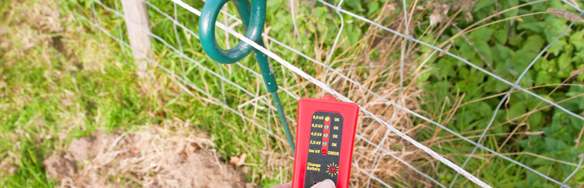Protéger les animaux: comment choisir sa clôture électrique ?